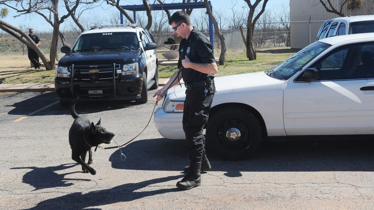 Abilene police K9 demonstration.