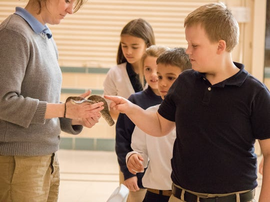 Sam Roberts and other students at Immaculate Conception School line up to pet a Virgin Islands boa, an endangered species of snake, during the Toledo Zoo's outreach program.