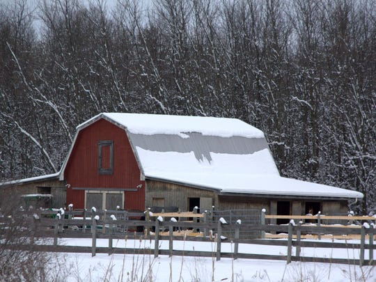 An eagle is formed on a Shelburne barn in March, 2013.