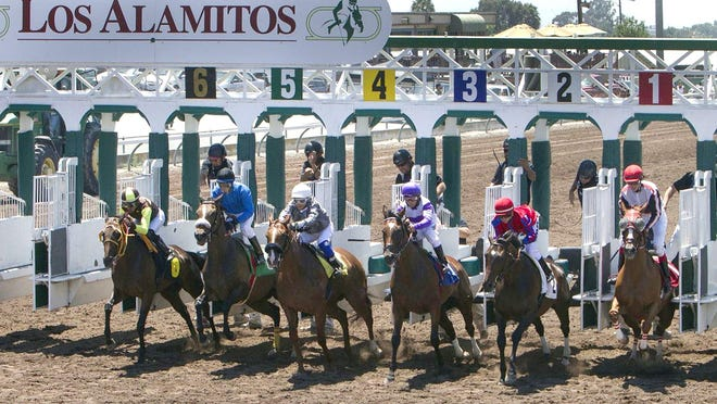 Thoroughbred horses bolt out of the starting gate in the first race at Los Alamitos Race Track on July 3, 2014 in Los Alamitos, California.