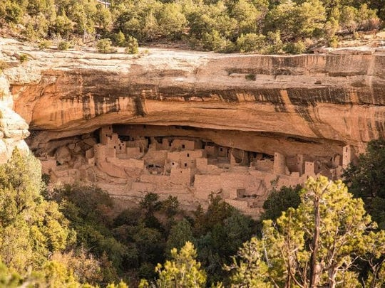 The Cliff Palace dwelling in Mesa Verde National Park was constructed by the Ancestral Puebloans.