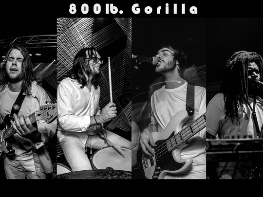 Rock/jam band 800 lb. Gorilla will perform Aug. 2 at Thelma Sadoff Center for the Arts.