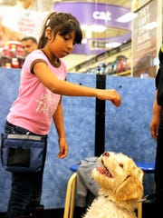 "Catalina, 10, works with ""Buddy"" during a dog training class on Monday night."
