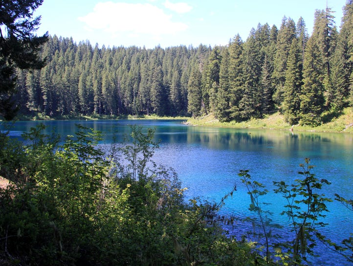 Clear Lake on the McKenzie River Trail east of Eugene.