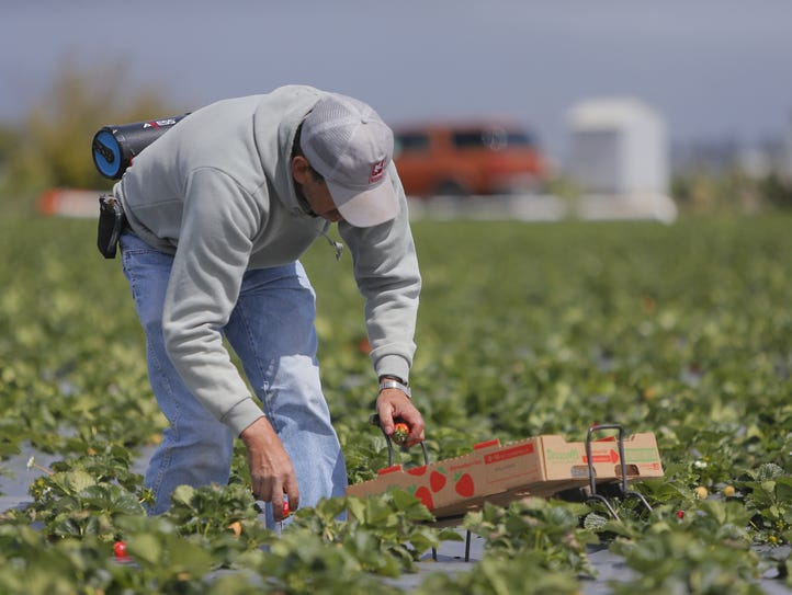 Thursday's Farmworker Housing Study Forum looked to