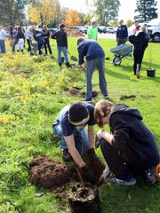 Webster Thomas High School students Ian Avery and Olan Schuh, both in foreground, and their classmates team up to plant more than 20 trees along Mill Creek in Webster to help stem erosion.