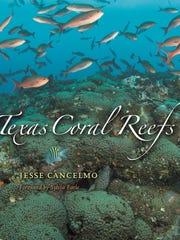 Jesse Cancelmo's book Texas Coral Reefs is filled with images shot by this accomplished underwater photographer and photojournalist.