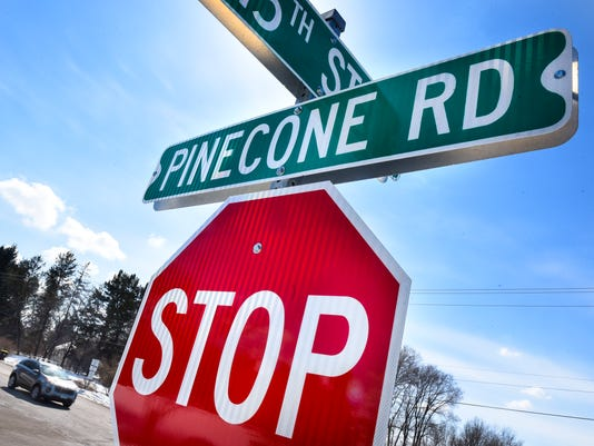 636584594096123625-Pinecone-1.jpg