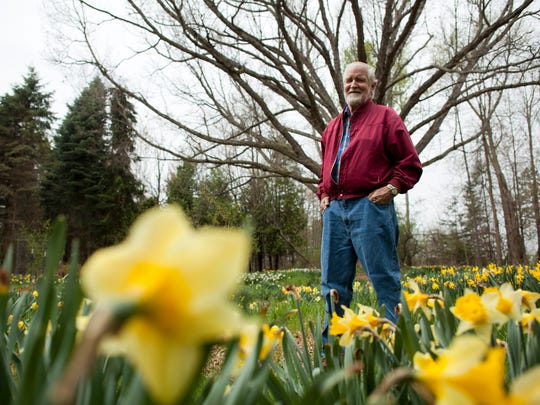 Bill Horman poses near a 200-year-old white oak in a patch of narcissus Wednesday, May 6, 2015 at Sunny Fields botanical park in Emmett Township. Horman has spent the past 50 years planting thousands of different types of plants on the 40-acre parcel of land.