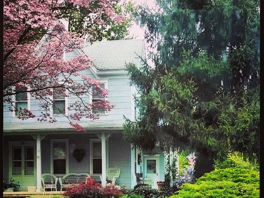 _nature__spring__blossom__bloom__trees__house__building__newjersey__jerseyspring__sky__clouds__home