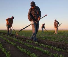 Desempleo entre hispanos en EEUU, el más bajo desde 1973