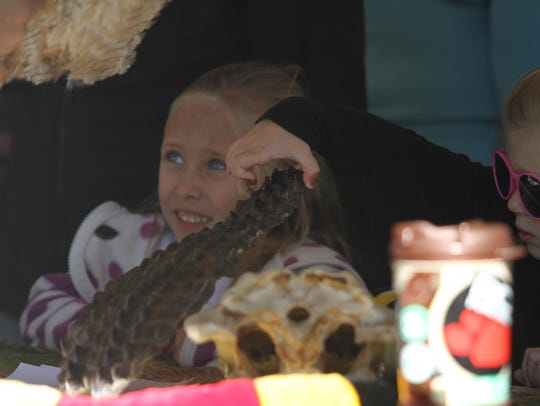 The annual Burrowing Owl Festival was held Saturday