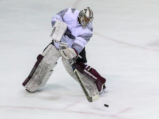 Ice Flyers starting goaltender Alex Sakellaropoulos 92ff73306