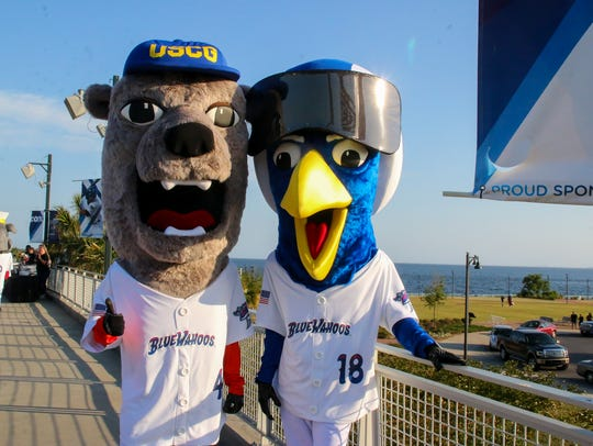 The Blue Wahoos unveiled five new mascots, one for