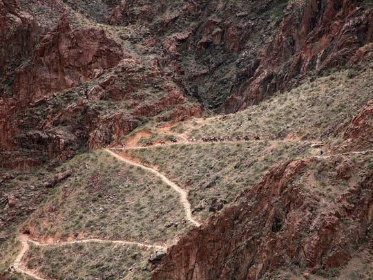 Visitors ride mules down Bright Angel Trail. Typically, wranglers take guests down this longer, less steep trail. When they ascend the next day, they'll take the South Kaibab – the only trail the packers usually use.