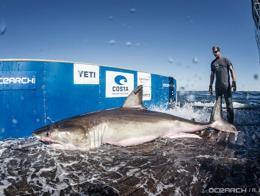 636674395895724500-03032017-OCEARCH-Lowcountry-0061.jpg