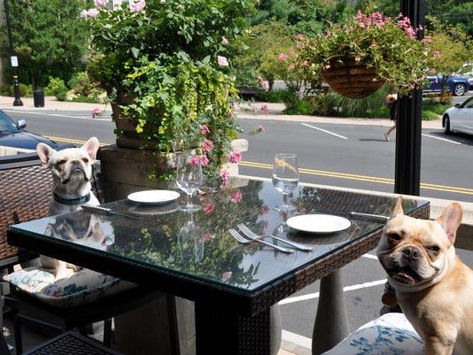 Courier News Dog Dining Bernards Inn.jpg