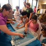 Kids check out sea life Saturday during Earth Day Pensacola at Bayview Park.