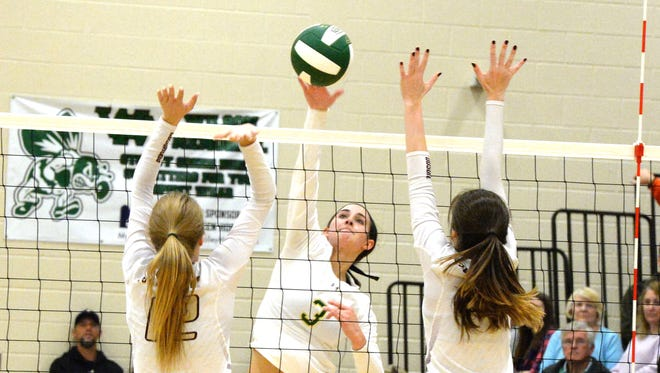 Wilson Memorial's Hannah Johnson (3) finished the season with 458 kills and 388 digs.
