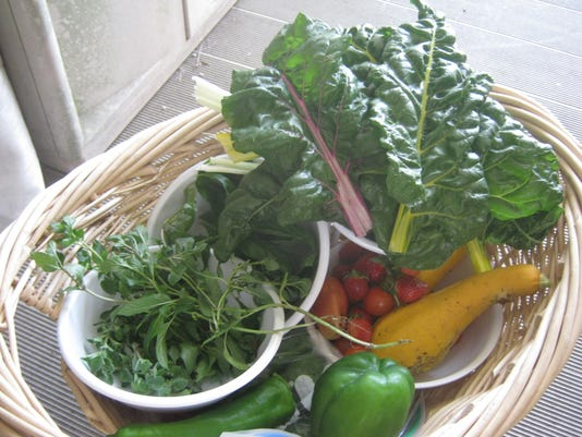 vegetables from garden for cookoff.JPG