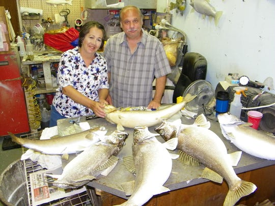Peggy and Mike Pusateri with a few unfinished walleye mounts in their Port Clinton shop.