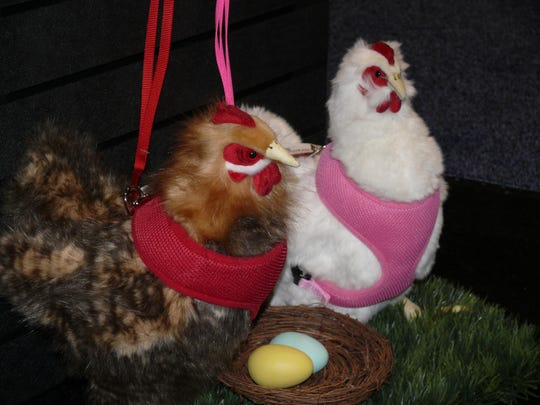 Chicken harnesses were all the rage at the Global Pet