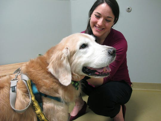 Dr. Lindsey Bullen pets Benko, a golden retriever with
