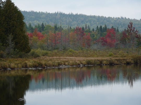 Early fall foliage reflects in Flagg Pond in Wheelock on Saturday, Sept. 20, 2014.