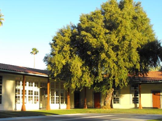 Frances Stevens School