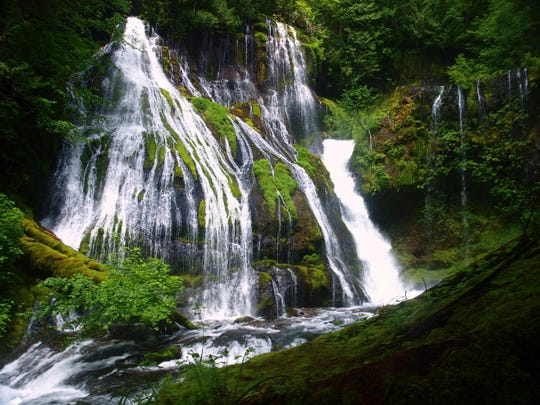 Finding Panther Creek Falls requires some navigating, but the payoff is splendid.