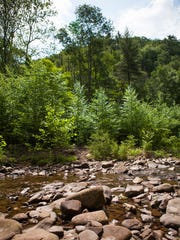 A river passes through in Ramsey's Draft Wildness, certain crossing points a few feet in depth.