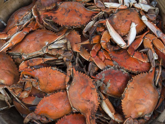 -le- Tawes Crab & Clam Bake 8544.jpg_20140718.jpg