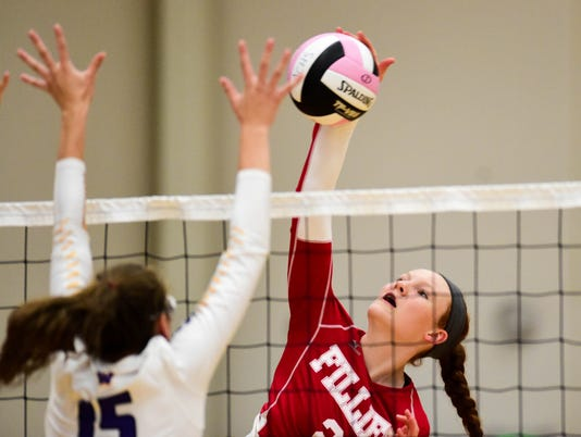 636081606148552678-des.all0902-ankeny-volleyball15.JPG