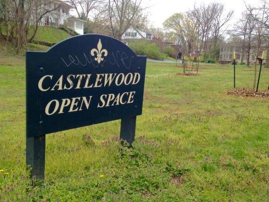 635949483135121850-Castlewood-open-space.jpg