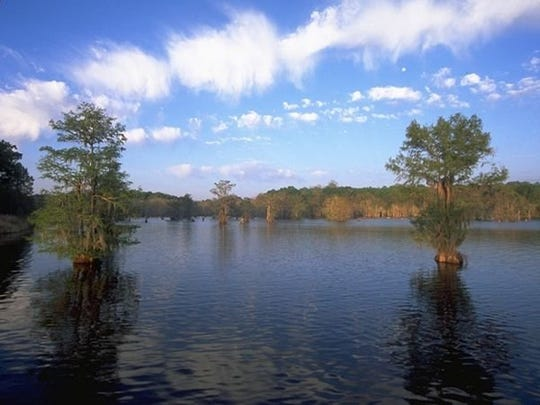 Chicot State Park near Ville Platte and Lake Bistineau State Park near Doyline have been tagged as additional regional staging areas for the current medical situation in the state. As a service to the health and medical facilities in those areas, these state parks will be unavailable for public use effective Wednesday, March 18.