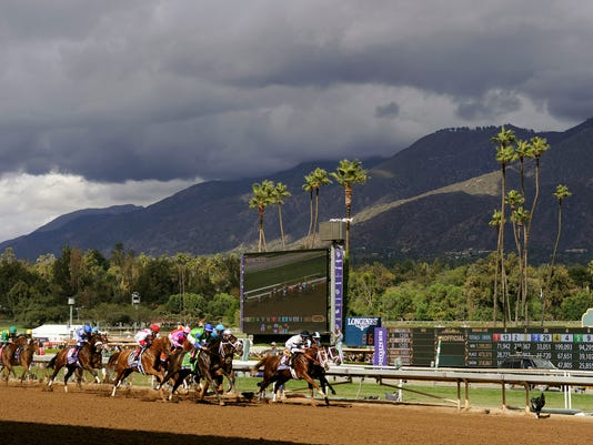 Horse Racing: 31st Breeders Cup World Championships