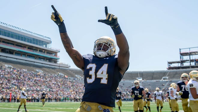 Apr 16, 2016; South Bend, IN, USA; Notre Dame Fighting Irish running back Dexter Williams (34) celebrates after a touchdown in the first quarter of the Blue-Gold Game at Notre Dame Stadium. Mandatory Credit: Matt Cashore-USA TODAY Sports