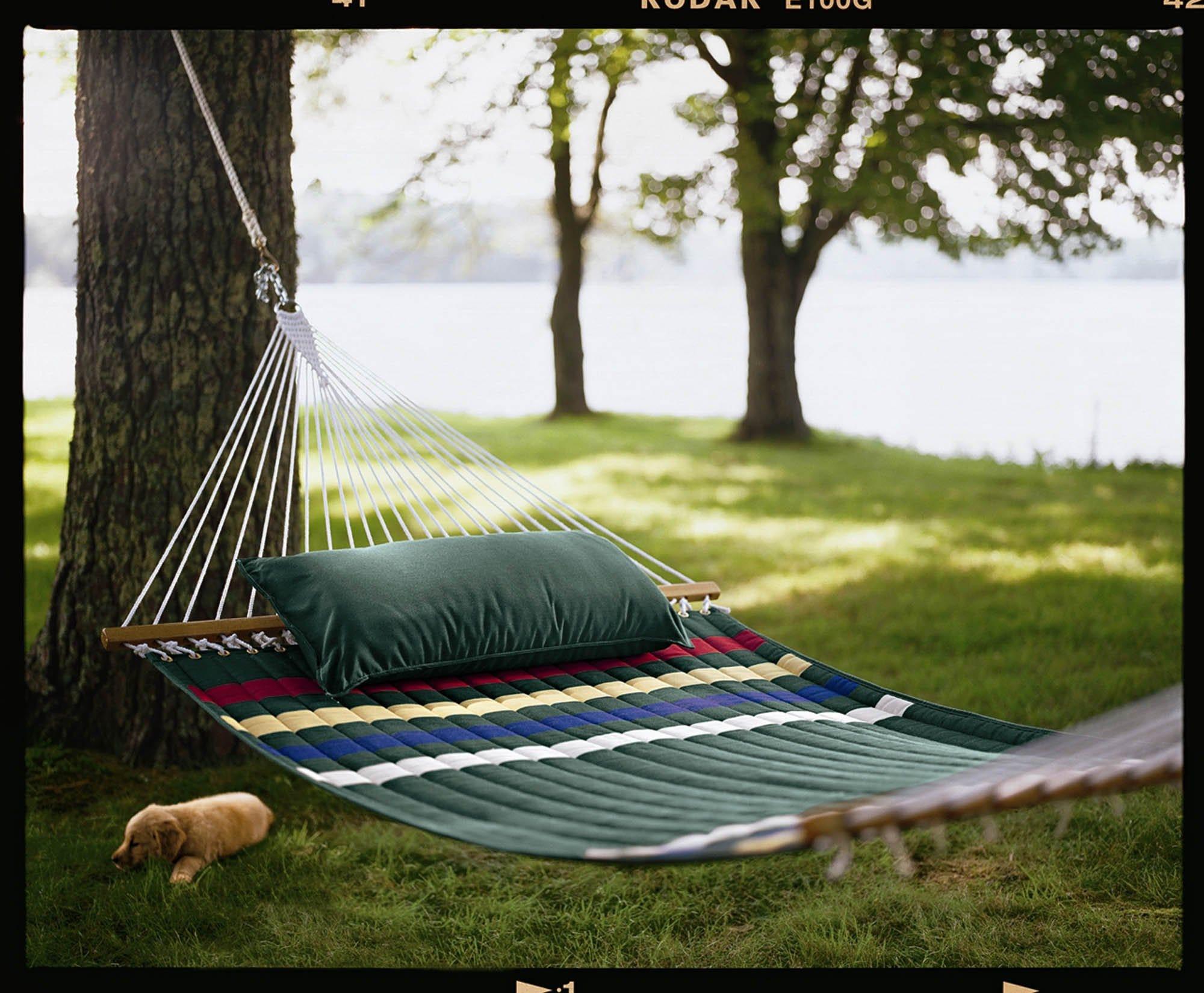 u p  school  quit hanging hammocks on trees or pay  25 fine  rh   freep