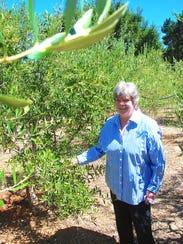 Charlotte Muia stands in an olive grove at Fattoria