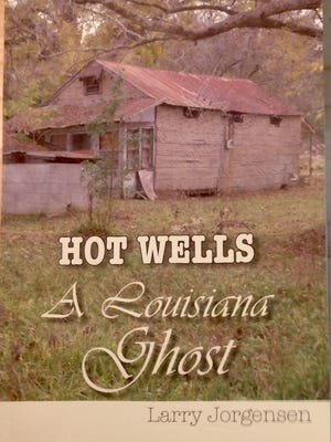 Larry Jorgensen's book explores the history and failed dreams of the former Hot Wells resort.