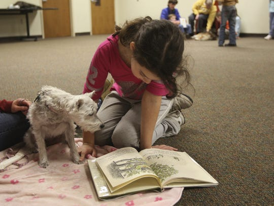 Read to a dog at a library.