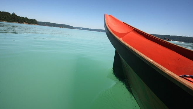 A Port Gamble S'Klallam canoe glides toward Quilcene in Hood Canal on Saturday, July 29, 2017. A phytoplankton bloom turned the water a bright shade of green.