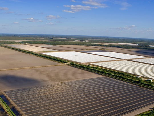 Aerial of site for Rural Lands West.
