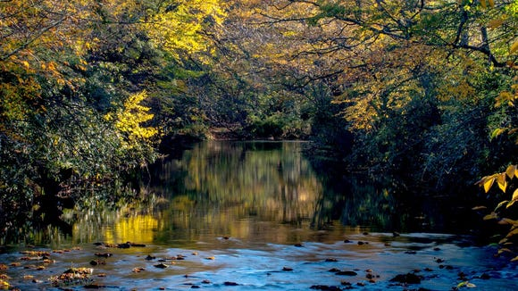 The Linville River is dappled by fall color last week. This is likely the last week for peak color in the Blowing Rock-to-Grandfather Mountain section of the Blue Ridge Parkway.