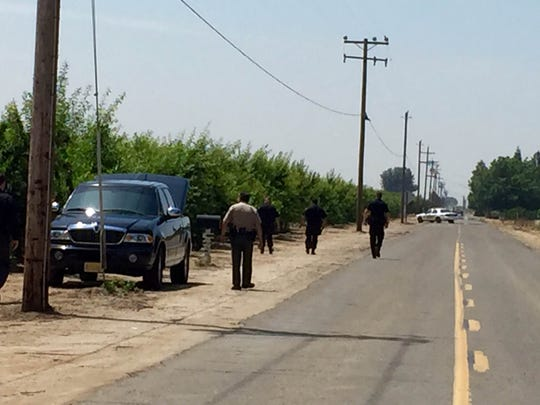 Sheriffs deputies walk the perimeter of a plum orchard south of Dinuba looking for evidence after a shooting left one man dead and two others wounded.