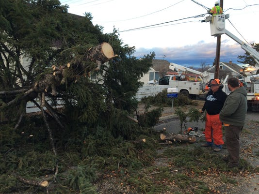 -tree down.jpg_20151209.jpg
