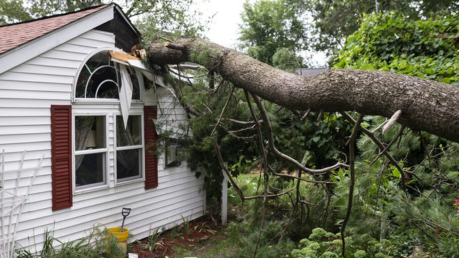 A tree fell onto a house on Greenwood Drive in Auburn during the afternoon storms Tuesday.