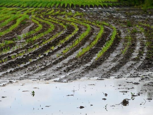 FON 063014 wet farm field.jpg