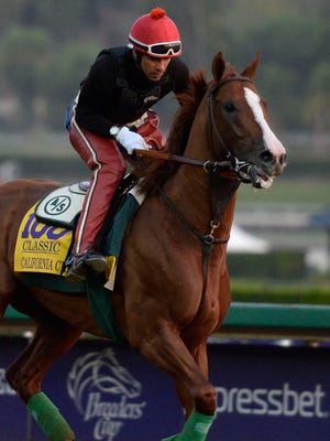 California Chrome works out in the morning to prepare for the 31st Breeders Cup World Championships at Santa Anita Park.