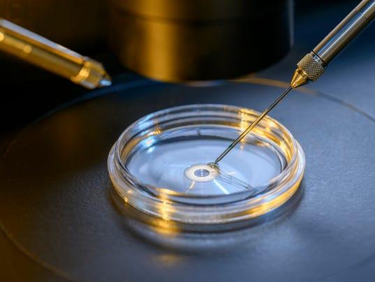 In Vitro Fertilisation Laboratory Microscope Closeup